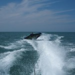 ACCS - Ciambella Boat-09 640x480